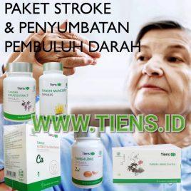paket stroke_wm